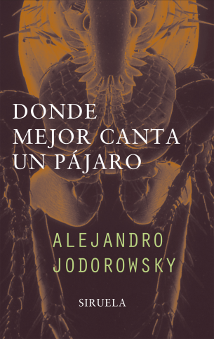 los evangelios para sanar alejandro jodorowsky pdf free